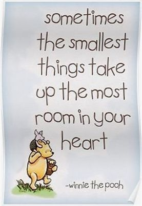 Good Luck Quotes Good Luck Wishes Sports Quotes About Love English Sweet Wall Art Stick Good Morning Inspirational Quotes Good Morning Quotes Pooh Quotes