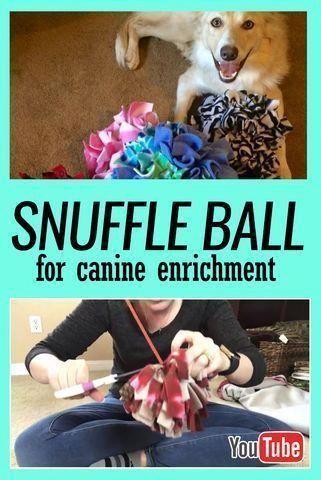 Dog Training Methods Dogtrainingatlanta Howtotrainapuppy Diy