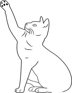 Ausmalbild Katze Hebt Die Pfote Zum Ausmalen Ausmalbilder Malvorlagen Katze Ausmalbilderkatze Ausmalbilder Katzen Ausmalbilder Wenn Du Mal Buch