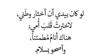 كلام عن الشوق والحنين للحبيب اجمل خواطر وكلمات ورسائل اشتياق روعه In 2021 Arabic Calligraphy Calligraphy