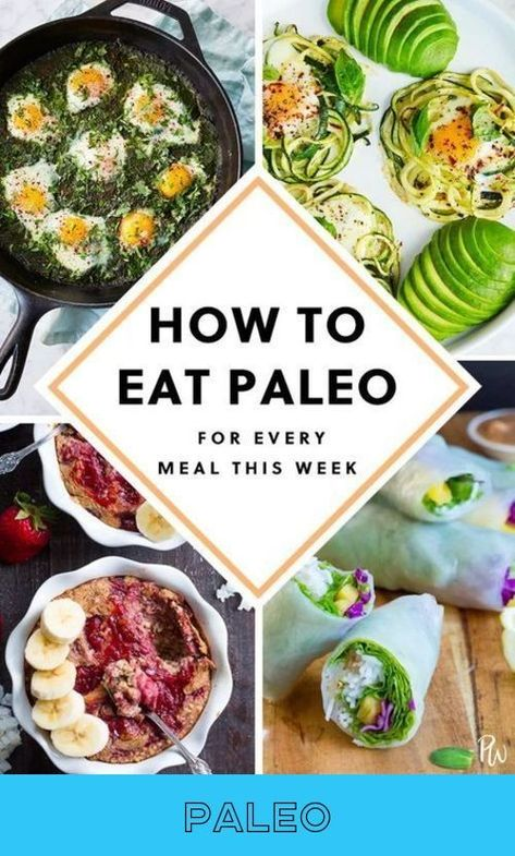 Admirable  fact!  Paleo  Follow the link to find out more...
