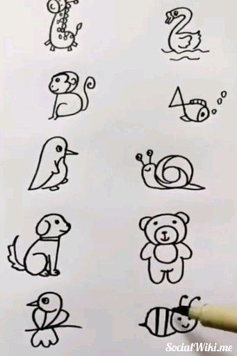 Amazing Easy Drawings! 🦒🦢🐻🐒🐦 -  Amazing  Drawings  Easy