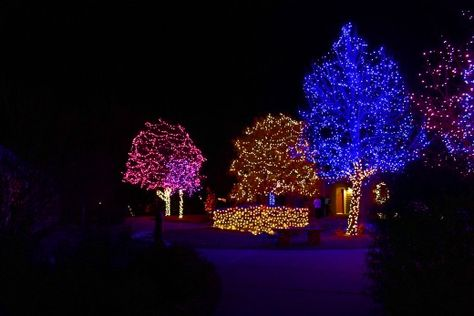A Driving Tour Of Neighborhood Holiday Lights In South Metro