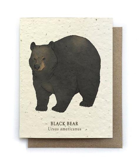 black bear greeting card  plantable seed paper  blank