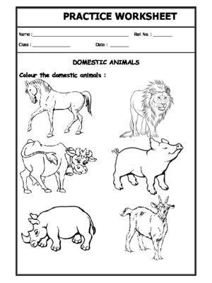 Worksheet Of Domestic Animals Domestic Animals Animals Science In 2020 Animal Worksheets Animal Science Science Worksheets