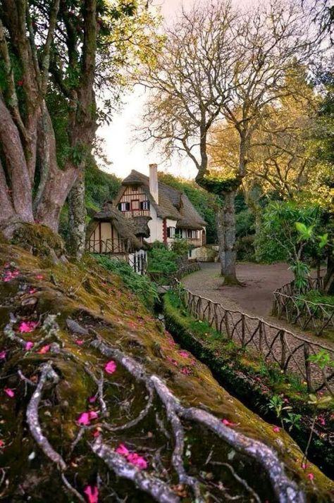 My Inner Landscape Avec Images Paysage La Maison Du Bonheur
