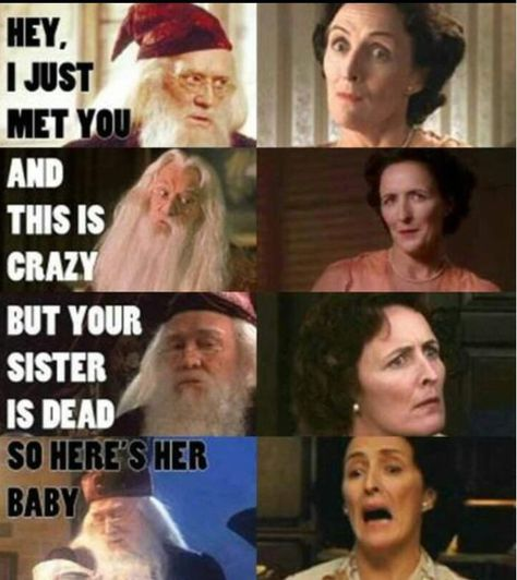 Dumbledore Petunia Dursley Harry Potter Grappig Harry Potter
