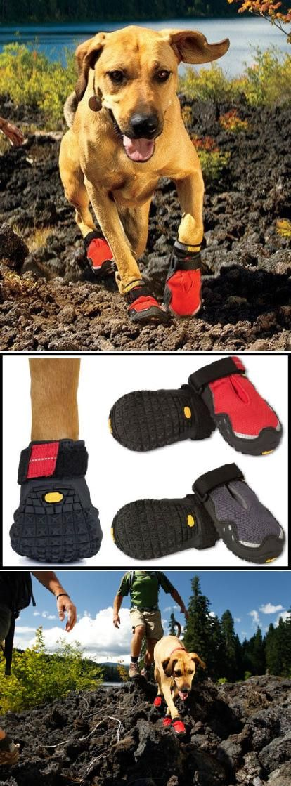 Protect your pup's feet this winter with some heavy duty boots.