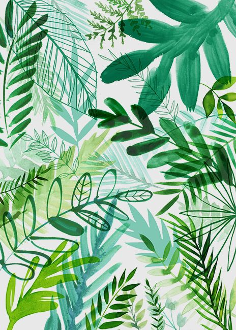 Jungle Forest Greenery Plants Illustration C Magrikie Plant