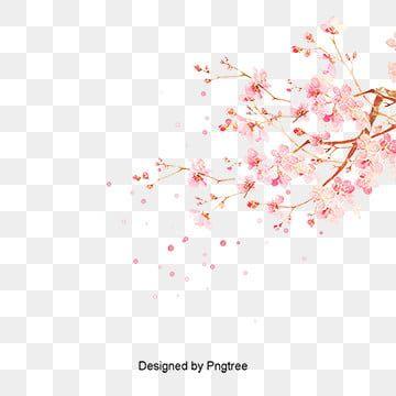 Tinta Pintados A Mano Hebilla Material Libre De Arboles De Cerezo Cherry Blossom Watercolor Cherry Blossom Japanese Cherry Blossom