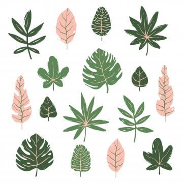 Set Of Tropical Leaves Tropical Clipart Tropical Leaf Png And Vector With Transparent Background For Free Download Tropical Leaves Plant Vector Tropical