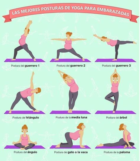 260 1001 Ejercicios Ideas Workout Exercise Fitness