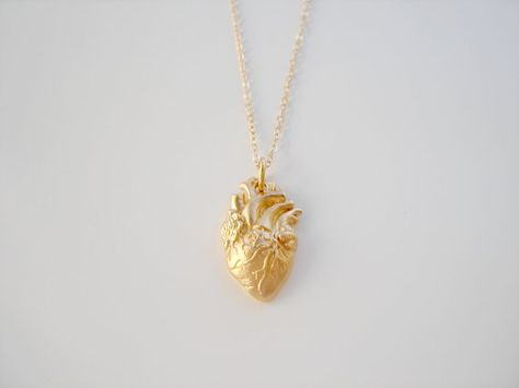 Anatomical - 14k Gold Filled Anatomically Correct Heart Organ Anatomical Heart Necklace by Emeline Darling