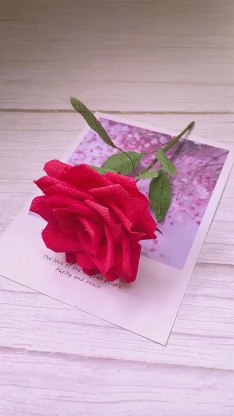 Wedding day, Valentine's day, Lovers gift, How can didn't have roses? Use pleated paper to make the beautiful rose flower, Save it, Follow us, get more exciting and the idea!