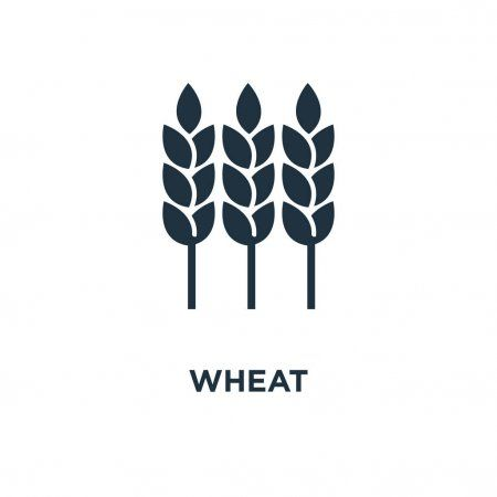 Wheat Icon Black Filled Vector Illustration Wheat Symbol White Background Typographic Logo Design Vector Illustration Illustration