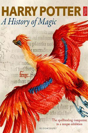 哈利 波特 一段魔法史 超清 在线观看 欧美电影 胖子视频 a history of magic harry potter books british library