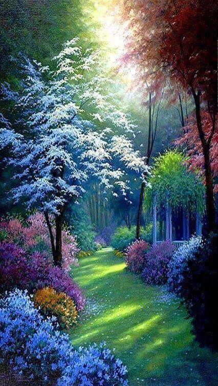 Imagem De Flowers And Garden Fotografii Prirody Pejzazhi Idei