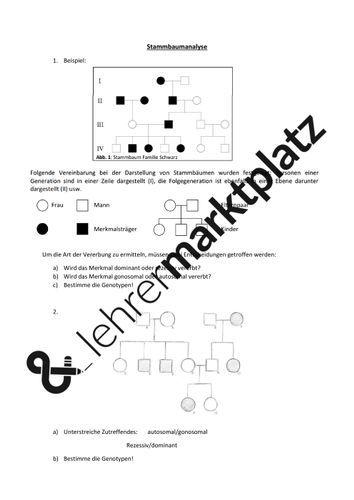 Arbeitsblatt Stammbaumanalyse Unterrichtsmaterial Im Fach Biologie Biologie Lernen Lehrmaterial