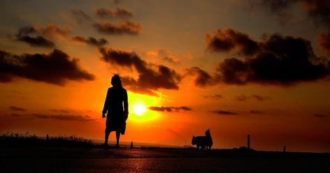 27 Gambar Matahari Terbenam Indah Seperti Halnya Pada Foto Matahari Terbenam Diatas Beruntungnya Saat In Di 2020 Matahari Terbenam Pemandangan Fotografi Pemandangan