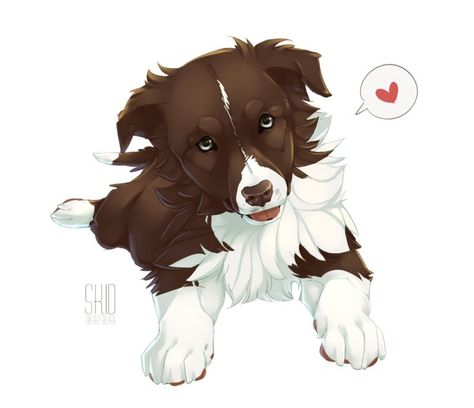 Latest Absolutely Free Border Collies dibujo Popular The Edge Collie hails in the borderlands connected with Great britain as well as Scotland (hence the actual br...  #Absolutely #Border #Collies