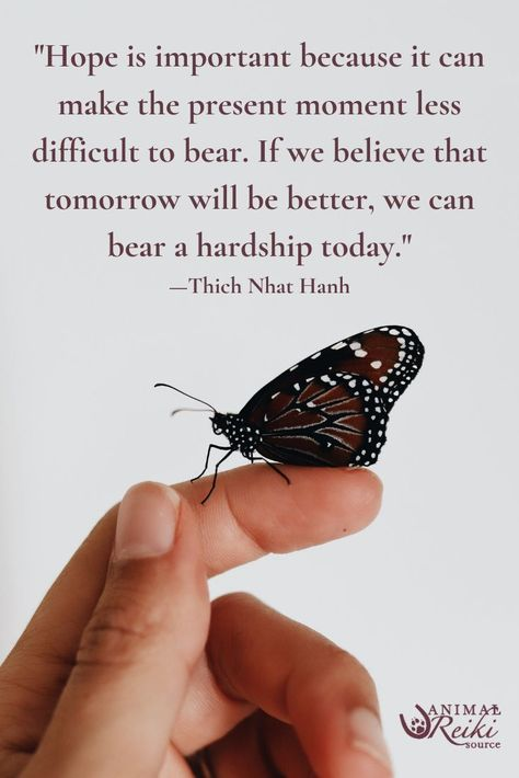 """This quote is a great reminder of the 2nd Reiki Precept - """"Just for today, do not worry.""""  #thichnhathanh #hopequotes #inspirationalquotes #spiritualquotes"""