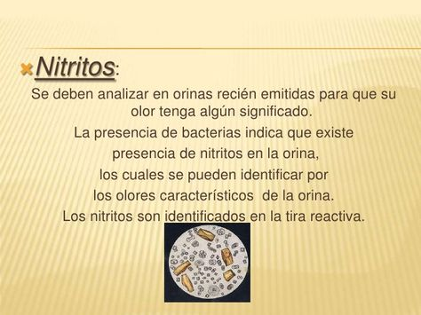 nitritos en la orina