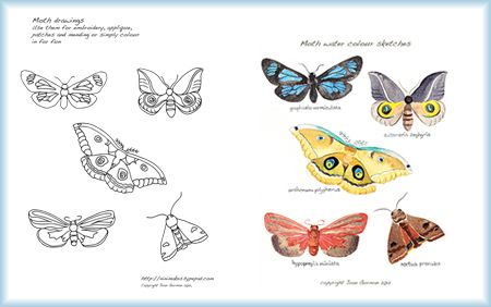 Moth-wtrcolr-pattern-sample