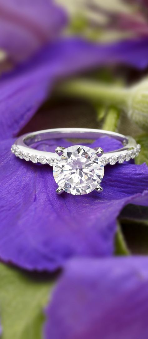 18K White Gold Petite Shared Prong Diamond Ring