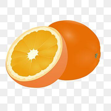رسم فاكهة البرتقال المرسومة شعار الفاكهة مجموعة قصاصات فنية قصاصات فنية بديعة Png صورة للتحميل مجانا Fruits Drawing Drawing Clipart Drawings