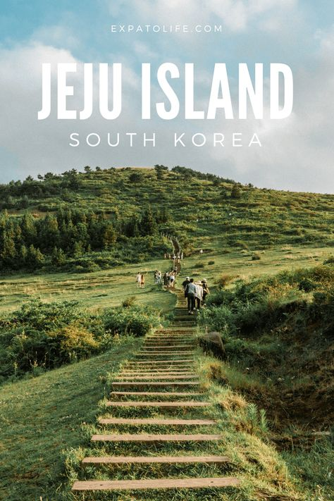 Planning to visit Jeju island? What are the best things to do in Jeju island South Korea? Read this Jeju Island Travel Guide to find out what to see and things to do in Jeju island, best places to stay in Jeju island, Jeju island tour and more. A perfect Jeju island itinerary with insider tips for what to do during 5 days in Jeju island is here. #jejuisland #southkorea #travelguide Seoul Korea Travel, South Korea Seoul, Asia Travel, Solo Travel, Places To Travel, Places To Visit, Travel Destinations, Jeju Island, Travel Inspiration