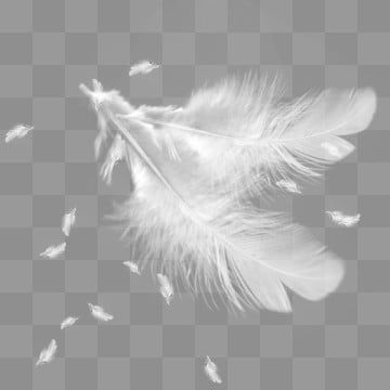 White Feather Hermosas Plumas Flotando Blanco Pluma Pelusa Abajo Ligero Flotador Alas Gradiente Blanco Plum En 2021 Plumas Blancas Alas De Angel Blanco Disenos De Unas