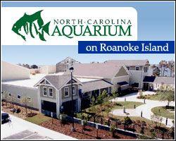 NC Aquarium Roanoke Island   374 Airport Road, Manteo   http://www.ncaquariums.com/north-carolina-aquariums?m=0