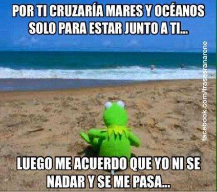 44 Ideas Memes De Amor Rana Rene Girlfriend Humor Fun Quotes Funny Best Friends Funny
