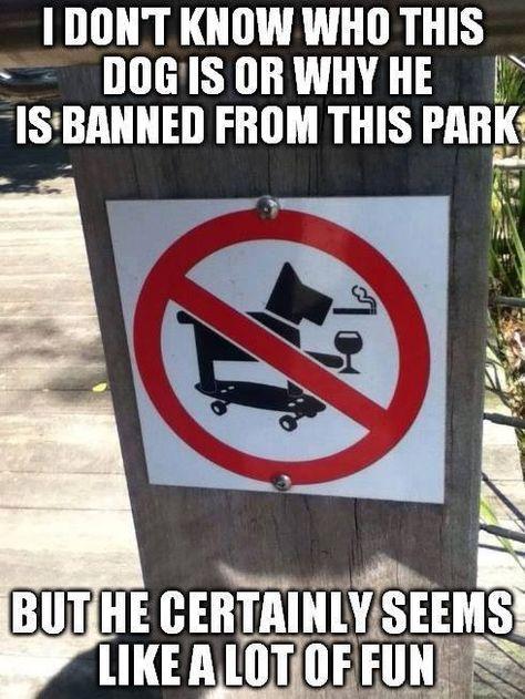 Sign of skateboarding dog drinking wine while smoking....prohibited
