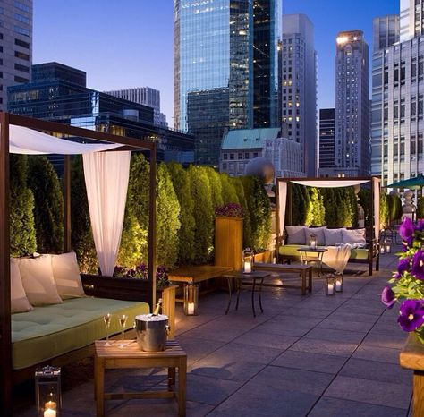 Sky Terrace Hudson Hotel 15th Floor Ny 屋上テラス