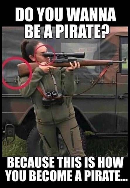 Do you wanna be a pirate?   Funny pictures, Funny images, Funny memes