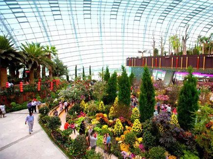 An Insight On Going On A Genting Highland Tour Singapore Attractions Gardens By The Bay Genting Highlands