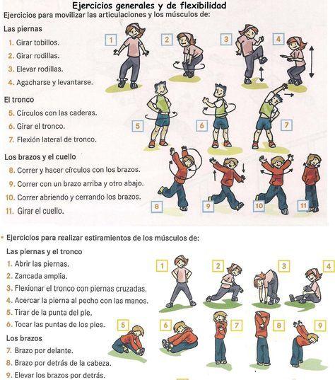La Importancia De Los Ejercicios De Flexibilidad Es Vital En Todos Lo Planificacion De Educacion Fisica Trabajo Educacion Fisica Ejercicios De Educacion Fisica