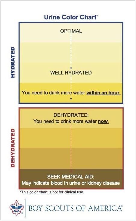 8+ good reasons to stock epsom salt in your preps Tips Pinterest - stool color chart