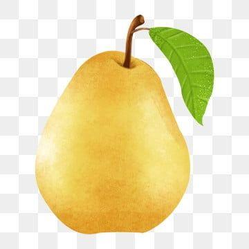 أخضر فاكهة سيدني كمثرى كمثرى الحر طبيعي Png وملف Psd للتحميل مجانا Green Fruit Apple Fruit Fruit