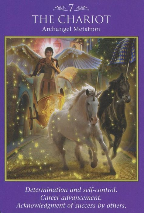 The Chariot Tarot card. The Chariot Tarot, Chakras, Angel Guidance, Spiritual Guidance, Spiritual Awakening, Oracle Tarot, Doreen Virtue, Tarot Card Meanings, Angel Cards