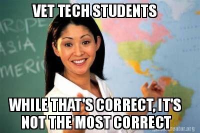 vet tech schooling