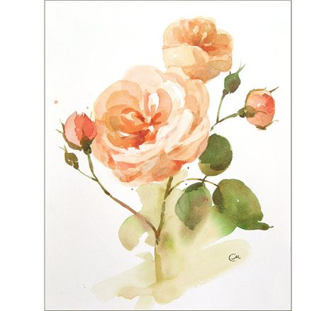 Anglais Roses 1 Peinture Aquarelle Originale 9 1 4 X 11 3 4