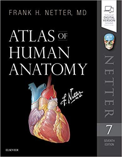 Atlas Of Human Anatomy 7th Edition By Frank H Netter Human Anatomy Anatomy Medical Textbooks