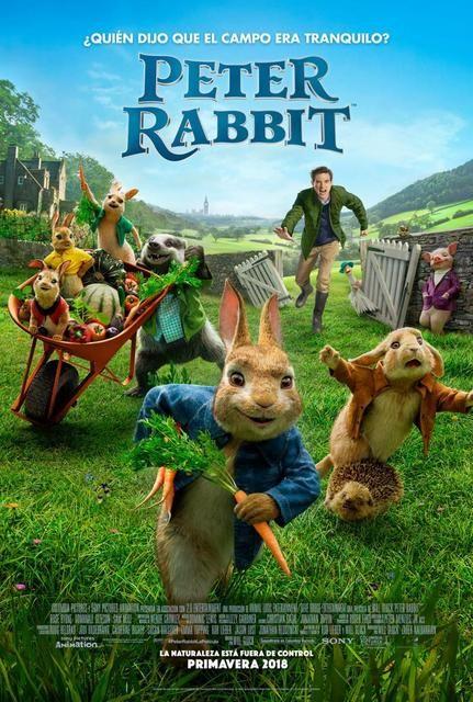 Peter Rabbit (2018) [Ver Online] [Descargar] [HD 1080p] [Español ...