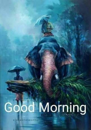 Pin By Sutapa Sengupta On Good Morning Good Morning Images Morning Images Good Morning Messages