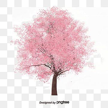 Hermosa Flor De Cerezo Rosa Primavera Entre Los Elementos De Calamar Imagenes Predisenadas De Flor De Cerezo Flor Calamar Png Y Psd Para Descargar Gratis P In 2021 Cherry Blossom