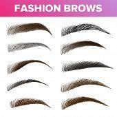 Fashion Brows Various Shapes And Types Vector Set. Brown And Black Brows Pack. Beautician Parlor, Sa poster #BodyCare