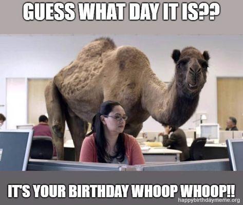 21 Funniest The Office Birthday Meme Happy Birthday Quotes Funny Happy Birthday Quotes For Her The Office Birthday Meme
