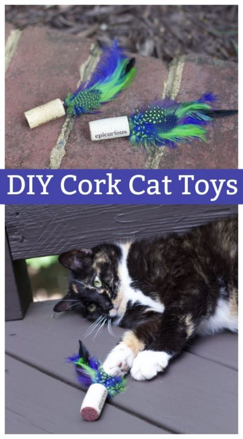 Cats Toys Ideas - Inexpensive DIY Easy Feather Cork Cat Toys - Ideal toys for small cats Homemade Cat Toys, Diy Cat Toys, Diy Animal Toys, Cool Cat Toys, Cool Cats, Diy Pour Chien, Diy Jouet Pour Chat, Diy Baby Gym, Cat Gym